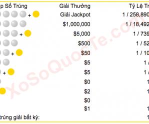Hướng Dẫn Mua Vé Số Mega Millions Tại Việt Nam